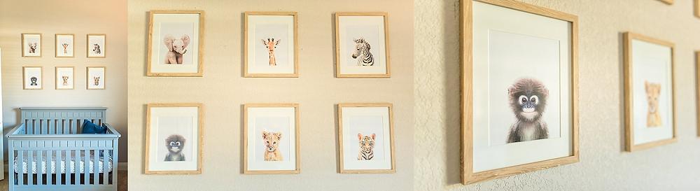 animal drawings in baby nursery