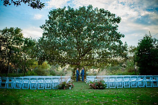 Dallas arboretum wedding photography