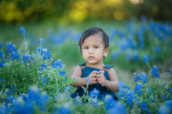 boy sitting in bluebonnets Grapevine photographer