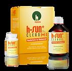 h-sun+ clean.png