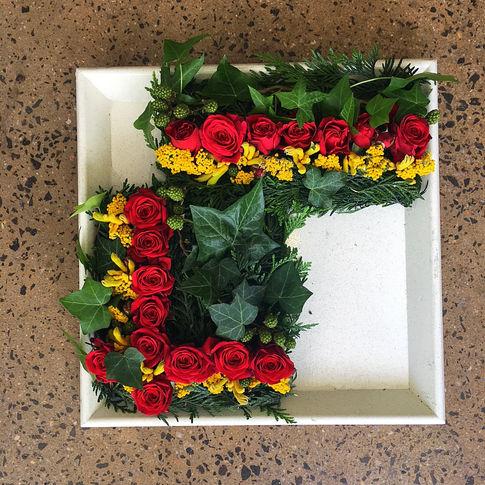 Rose week 6_edited.jpg