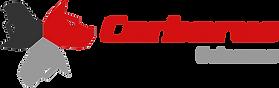 Cerberus Sciences Logo