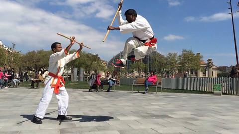 History of martial arts & Kalarippayattu