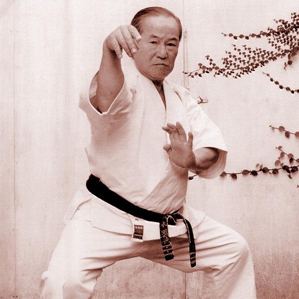 the-five-katas-of-yagi-meitoku-341