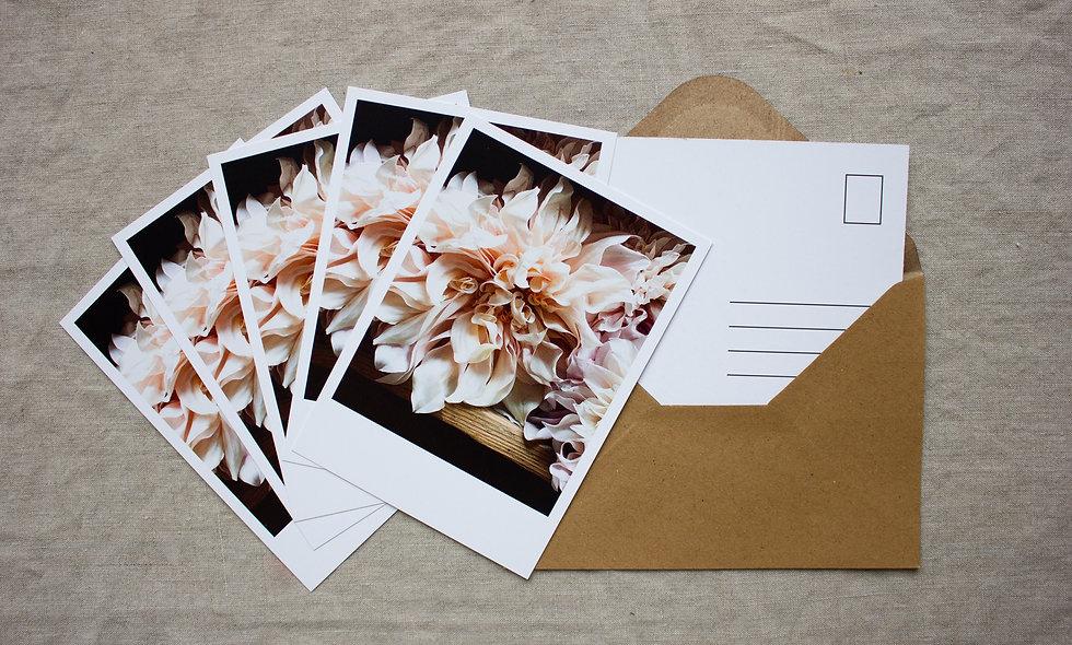 Postkartenset Herbst-Winter imraum Impressionen Dahlien