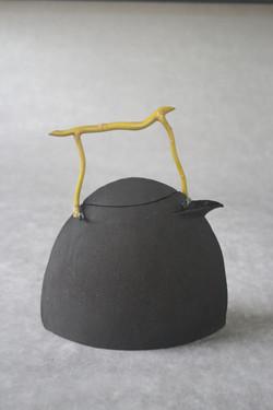 Théière Grès Noir + saule tortueux 6