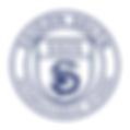 saigon-south-international-school-logo.p