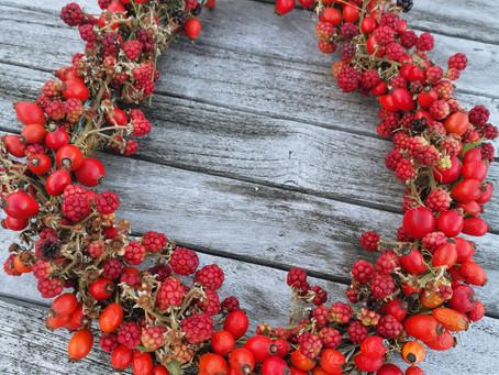 Warum der faule Gärtner jetzt den besten Boden bekommt und meine liebsten Teerezepte für den Oktober