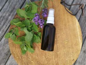 Rezept Mückenspray für Kinder ohne ätherische Öle