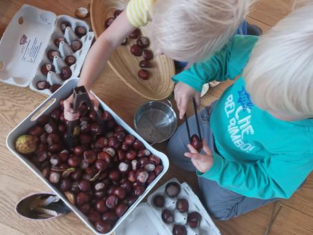 Kastanienzeit! Meine liebsten Tipps für die kleinen Früchte - ganz ohne Kastanientiere. Versprochen.