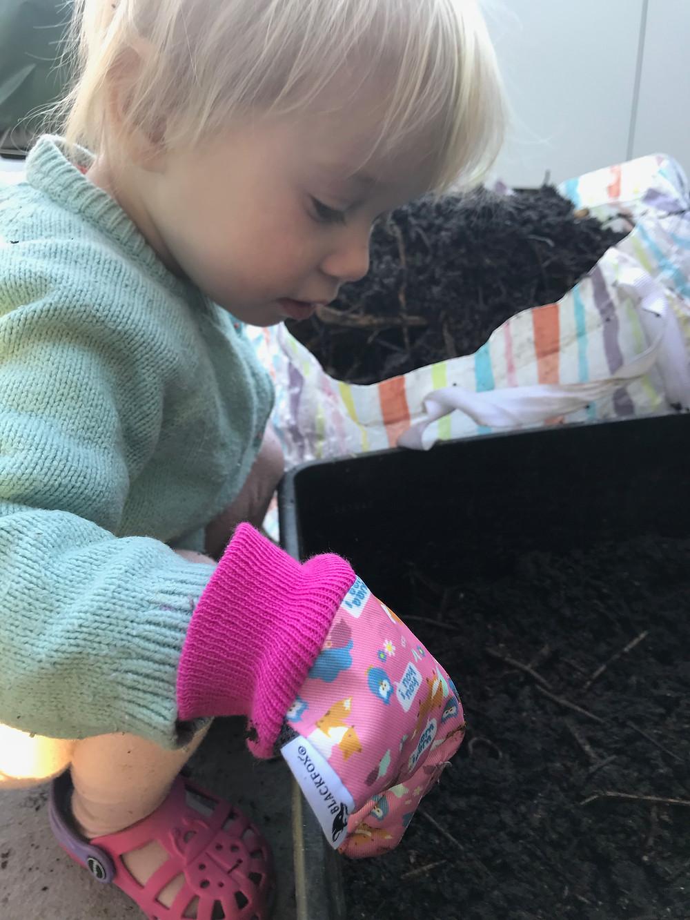 Wurmkompost, Katharina rührt, Wurmkiste, Würmer