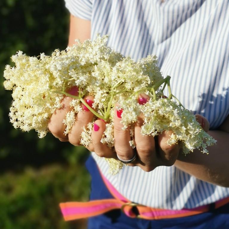 Natürlich Schön - Gesichtscreme Holunderblüte