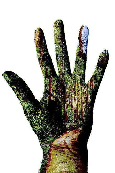 Hand of Man.jpg