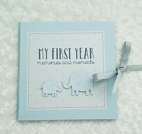 Baby's First Year Record Book