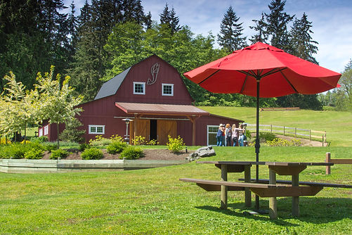 Dancing Fish Vineyards - Barn Events on Whidbey Island
