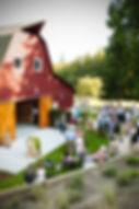 Dancing Fish Vineyards - Barn Party
