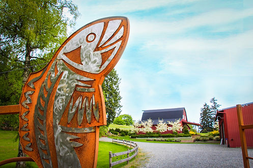 Welcome to Dancing Fish Vineyards - Wine on Whidbey Island
