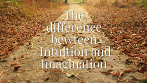 Intuition, Imagination and Emotions