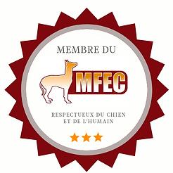 badge mfec.original.png