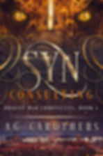 Syn Consulting.jpg