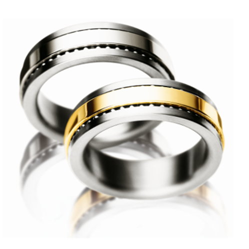 Meister Titanium and 18ct Gold Spinning Ring