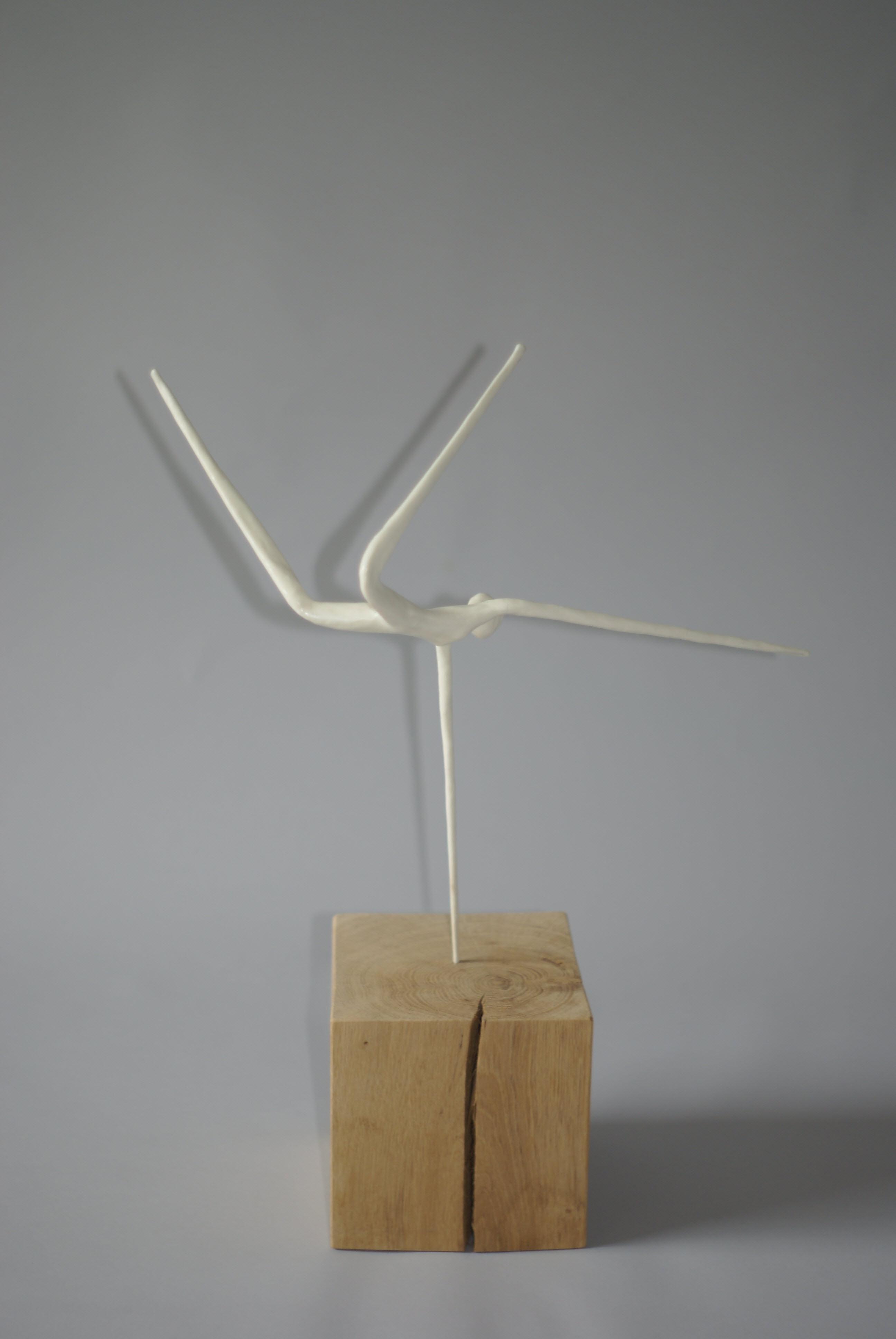 Wim Van Borm - Handstand