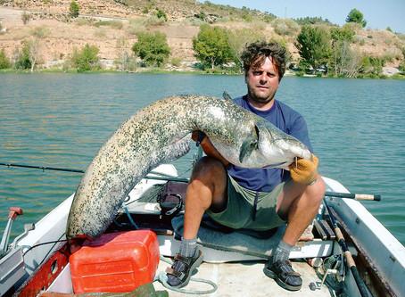 Úszós horgászat harcsára