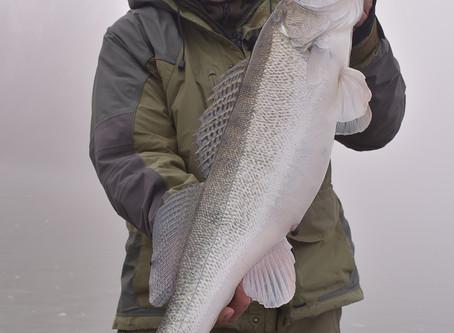Extranapok a horgászatban