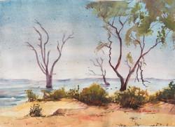 562. 'Lake Bonney Barmera'