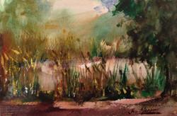 442. 'Dam Mistletoe'