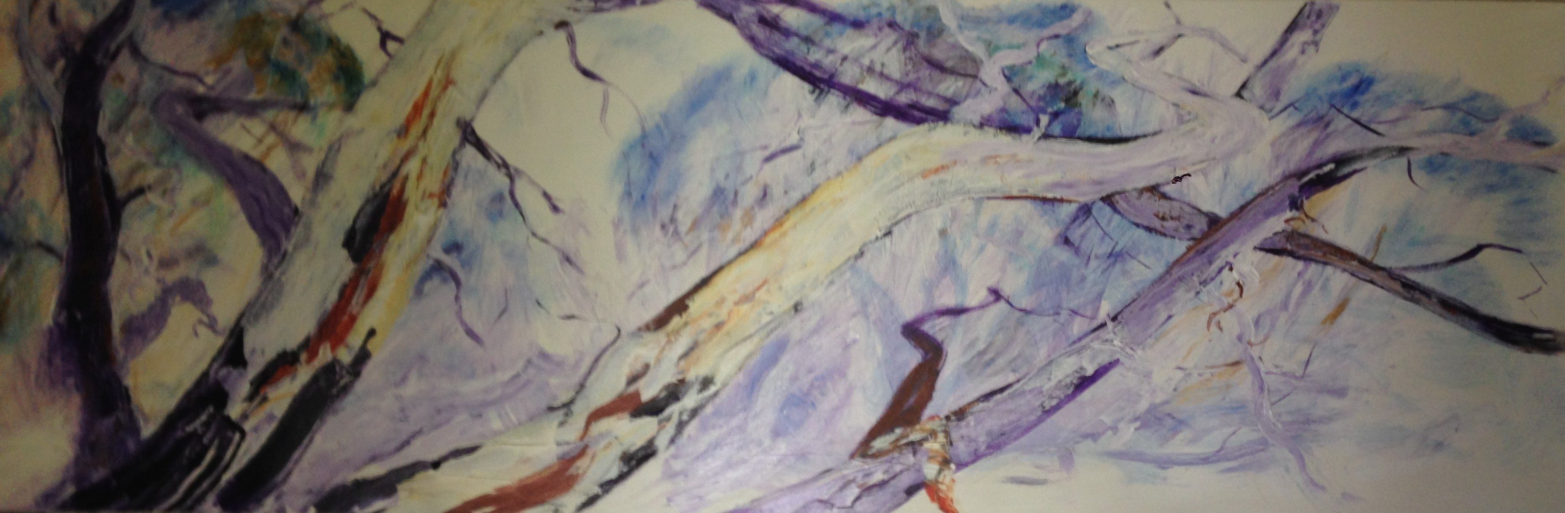 458. 'Purple Gums'
