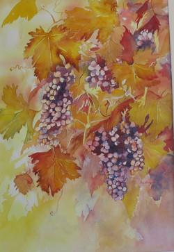 51. 'Grapes'