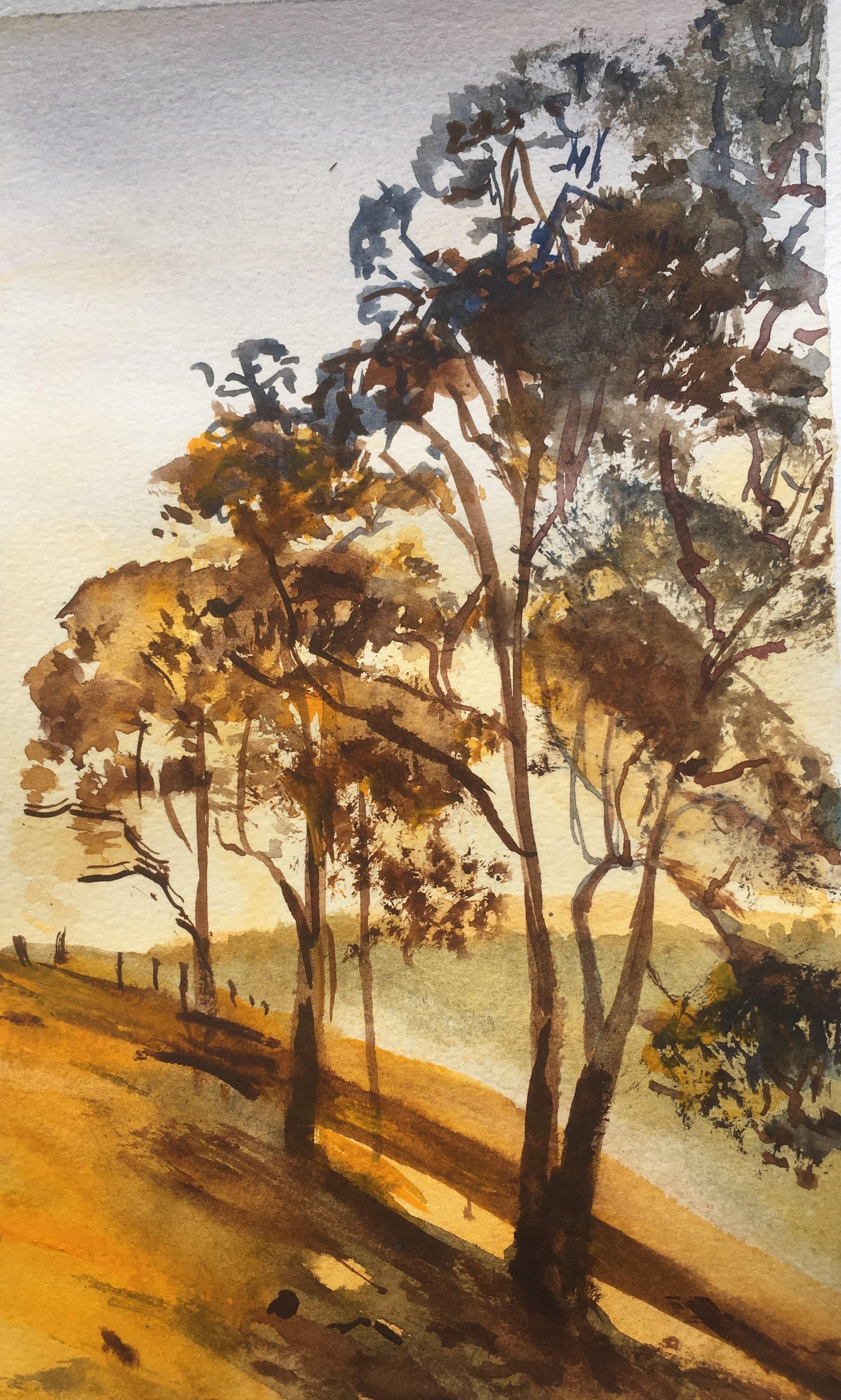 179.'Bingera Yellow'