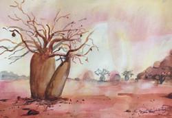 582. Boab Trees 2'