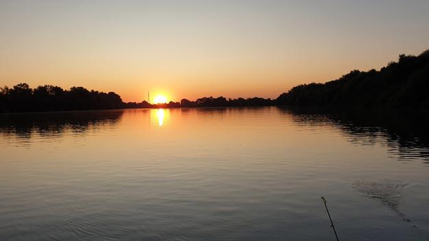 Vissza a deltába