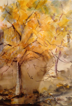 443. ' Change in leaves'