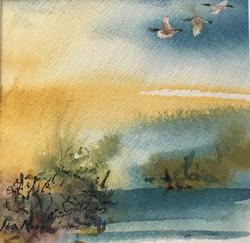 522. 'The waterhole'