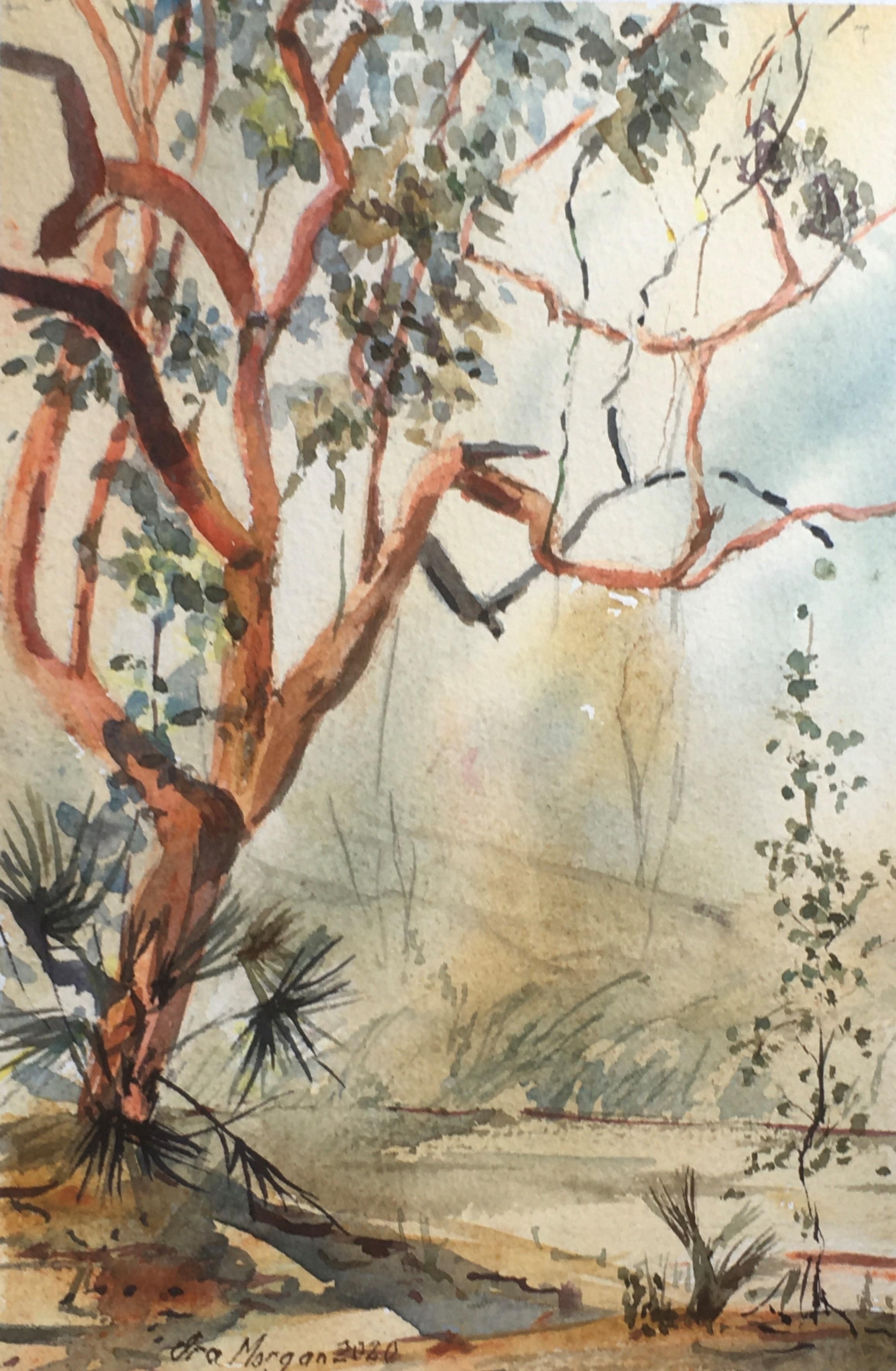 583. 'The Bright Orange Tree'
