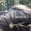 Thumbnail: Monogram Hair Pins©️