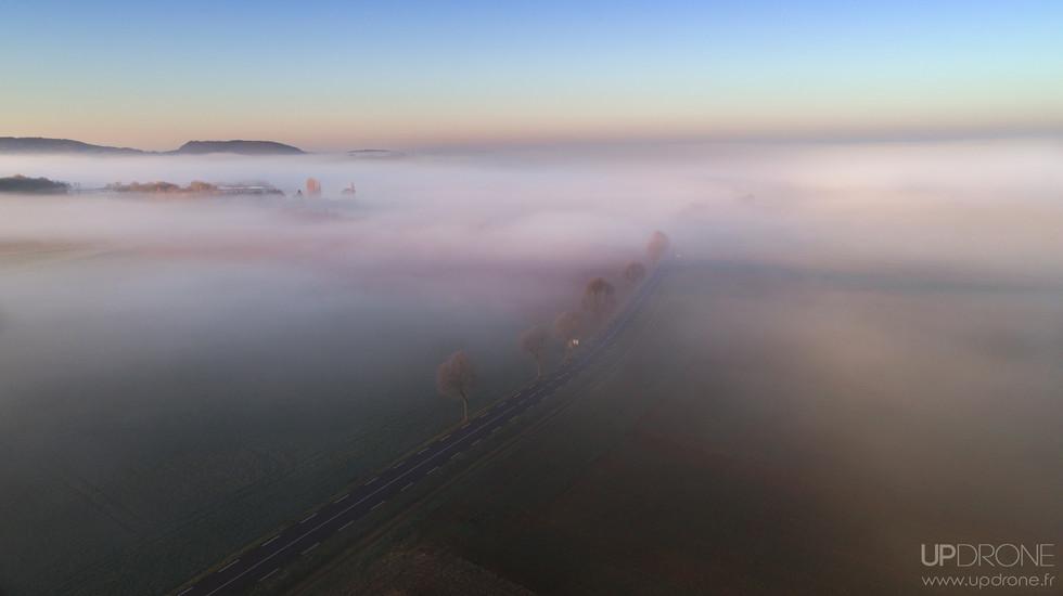 Brume sur la route de Domblans