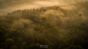 updrone-brume-foret-pannessieres-2020.jp
