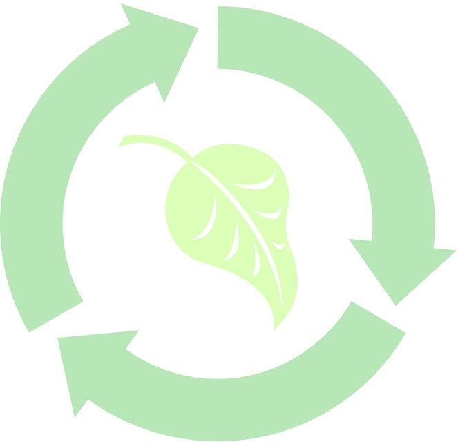 environmental 2.jpg
