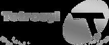 logo@2xtetro.png