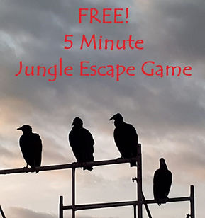 Free Jungle Escape Game.jpg