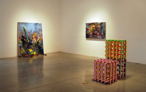 3D Painting, Peggy Phelps Gallery