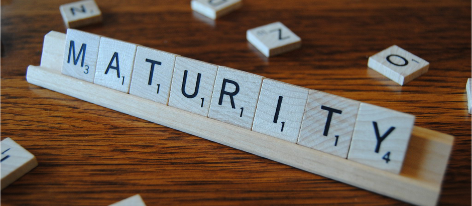 Maturity: The Intersection of Experience & Rationality