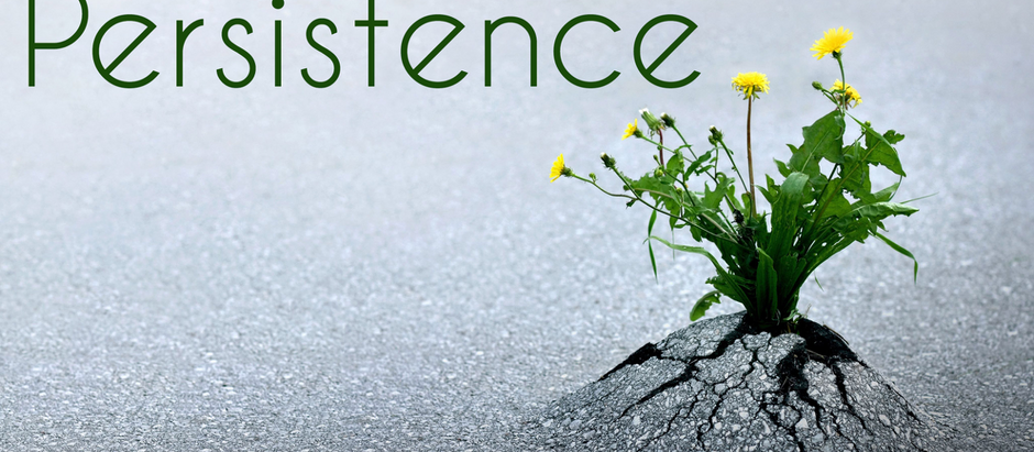 Persistence: The Intersection of Optimism & Grit