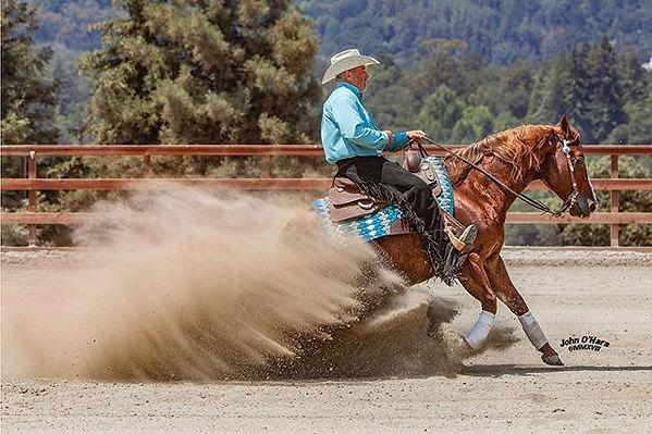 #moonshinenjuice #nrha #horse #horses #s