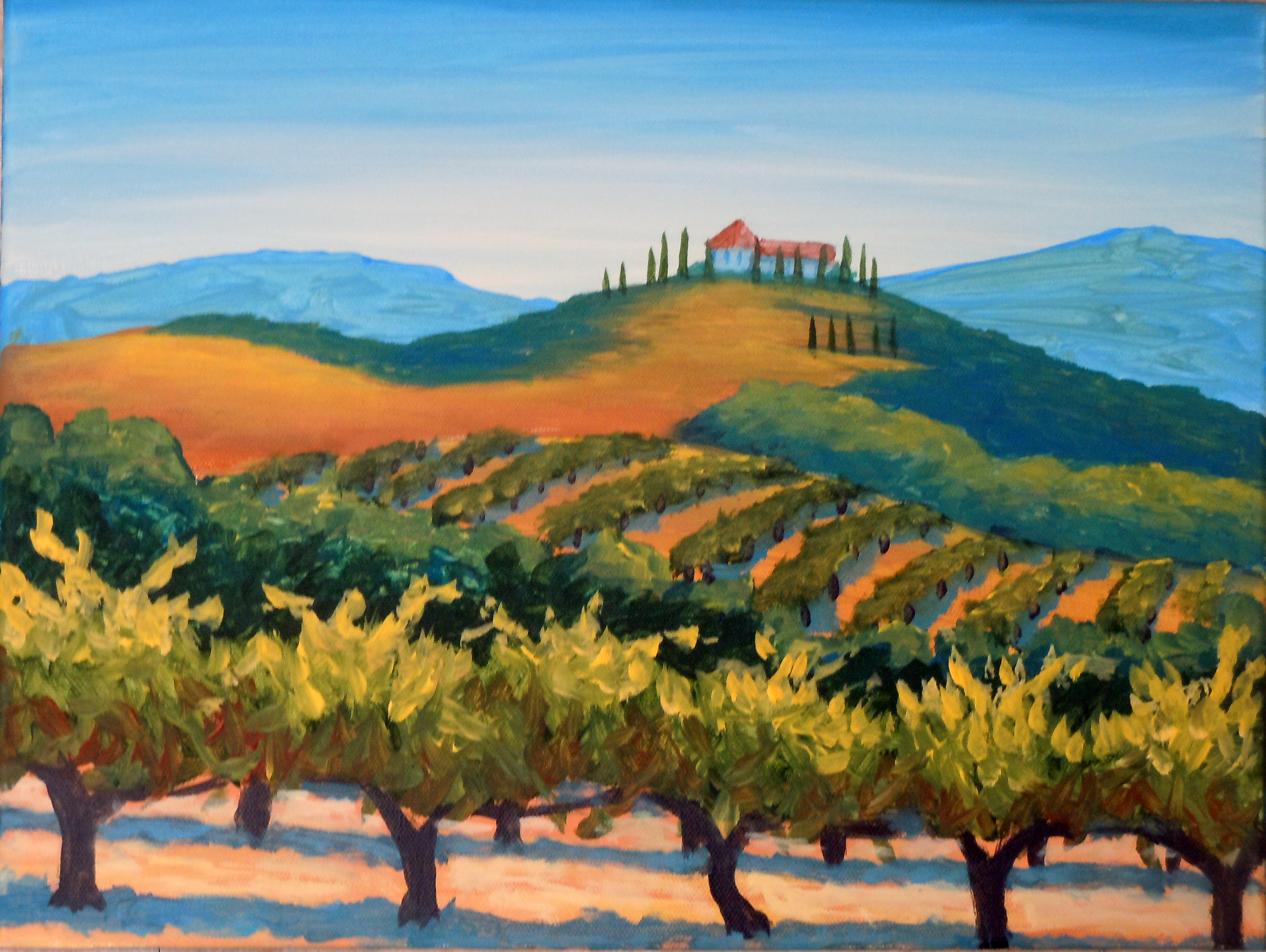 Vineyard With Villa
