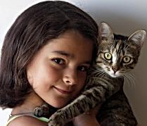 Apivet organisme de formation pour l'attestation de connaissances au certificat de capacité espèce Chat